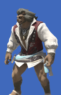Model-Shirt of the Divine Light-Male-Hrothgar.png