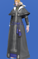 Model-Chimerical Felt Robe of Casting-Male-AuRa.png