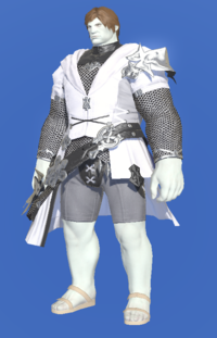 Model-Direwolf Tabard of Aiming-Male-Roe.png