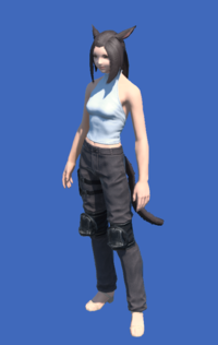 Model-Obsolete Android's Trousers of Scouting-Female-Miqote.png