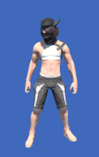 Model-YoRHa Type-55 Cap of Fending-Male-Miqote.png
