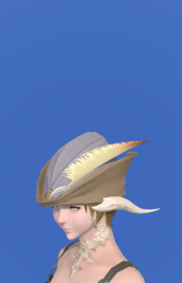 Model-Aetherial Rainmaker's Hat-Female-AuRa.png