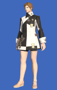 Model-Company Tabard-Male-Hyur.png