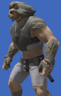 Model-Aetherial Boarskin Ringbands of Storms-Male-Hrothgar.png