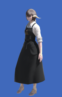 Model-Craftsman's Apron-Female-AuRa.png