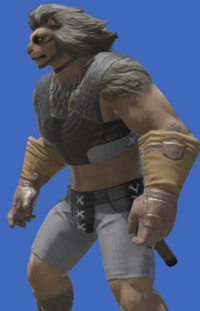 Model-Aetherial Cotton Bracers-Male-Hrothgar.png