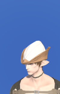 Model-Aetherial Hunting Hat-Male-Elezen.png
