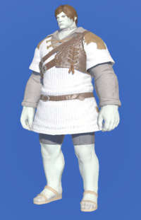 Model-Aetherial Ranger's Tunic-Male-Roe.png