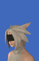 Model-No.2 Type B Goggles-Female-Miqote.png