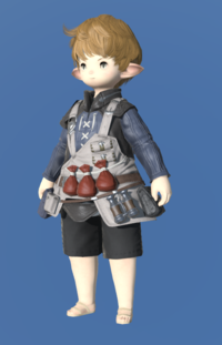 Model-Royal Volunteer's Gambison of Healing-Male-Lalafell.png