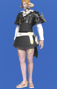 Model-Scion Thief's Tunic-Male-AuRa.png