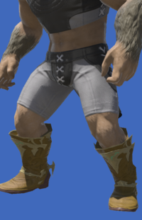 Model-Dragonskin Boots of Healing-Male-Hrothgar.png