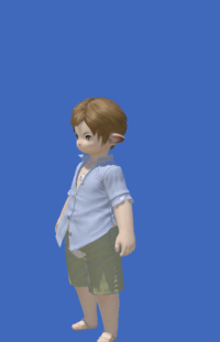 Model-Summer Indigo Shirt-Male-Lalafell.png