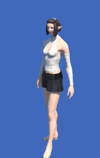 Model-YoRHa Type-55 Bottoms of Maiming-Female-Elezen.png