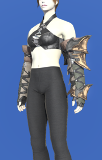 Model-Augmented Slothskin Gloves of Aiming-Female-Roe.png