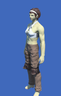 Model-Obsolete Android's Trousers of Striking-Female-Roe.png