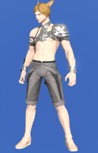 Model-Coliseum Galerus-Male-Miqote.png
