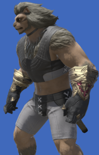 Model-Midan Gloves of Aiming-Male-Hrothgar.png