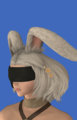 Model-No.2 Type B Goggles-Female-Viera.png