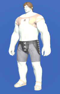 Model-Solar Summer Top-Male-Roe.png