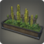 Large Planter Box Icon.png