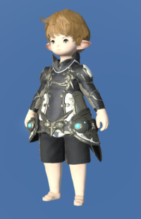 Model-Prototype Alexandrian Jacket of Striking-Male-Lalafell.png