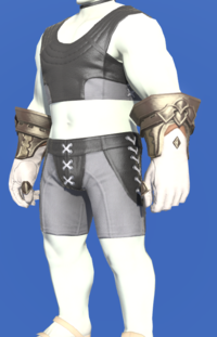 Model-Prototype Midan Gloves of Healing-Male-Roe.png
