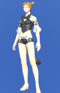 Model-Bunny Chief Bustier-Female-Miqote.png