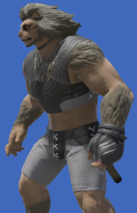 Model-Lucian Prince's Fingerless Glove-Male-Hrothgar.png