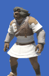 Model-Aetherial Ranger's Tunic-Male-Hrothgar.png