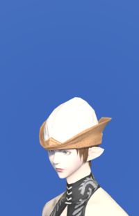 Model-Aetherial Hunting Hat-Female-Elezen.png