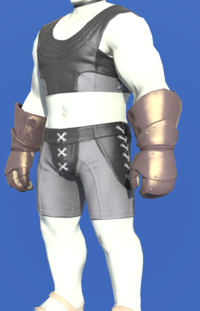 Model-Bronze Mitt Gauntlets-Male-Roe.png