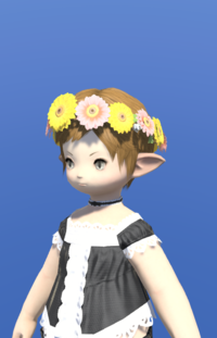 Model-Flower Crown-Female-Lalafell.png