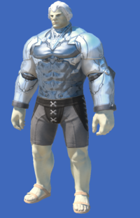 Model-Late Allagan Armor of Striking-Male-Roe.png
