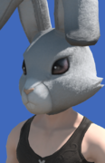 Model-Rabbit Head-Male-Hyur.png