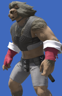 Model-Augmented Evoker's Ringbands-Male-Hrothgar.png
