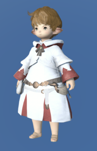 Model-Augmented Healer's Robe-Male-Lalafell.png