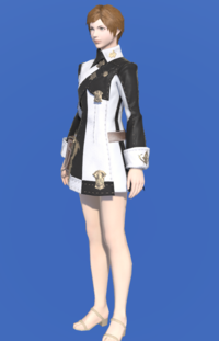 Model-Company Tabard-Female-Hyur.png