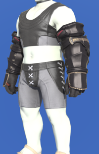 Model-Doman Steel Gauntlets of Fending-Male-Roe.png