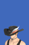Model-Elemental Hat of Aiming-Male-Hyur.png