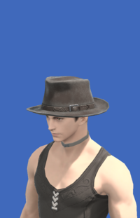 Model-Aesthete's Hat of Gathering-Male-Hyur.png