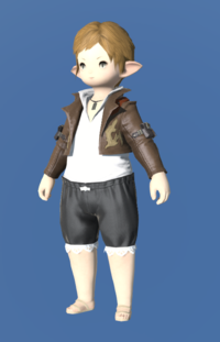 Model-Anemos Jacket-Female-Lalafell.png