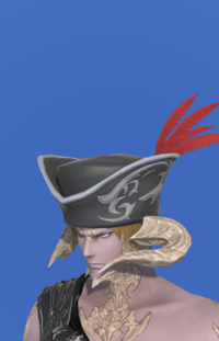 Model-Tricorne of the Daring Duelist-Male-AuRa.png