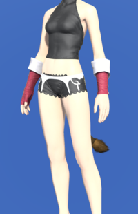 Model-Augmented Evoker's Ringbands-Female-Miqote.png
