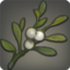 Splendid Greenwattle Icon.png