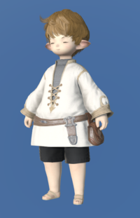Model-Aetherial Cotton Dalmatica-Male-Lalafell.png
