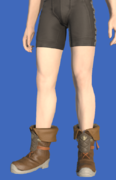 Model-Alliance Shoes of Striking-Male-Hyur.png