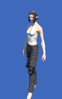 Model-Obsolete Android's Trousers of Scouting-Female-Elezen.png