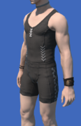 Model-Eastern Lord Errant's Wristbands-Male-Hyur.png