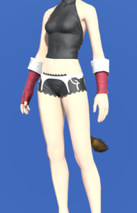 Model-Evoker's Ringbands-Female-Miqote.png